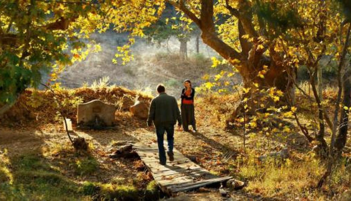 Cannes Film Review: 'The Wild Pear Tree'