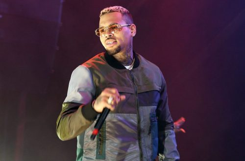 Chris Brown Charged With Pet Monkey-Related Misdemeanors