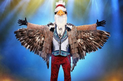 The Eagle's Wings Were Clipped on 'The Masked Singer'