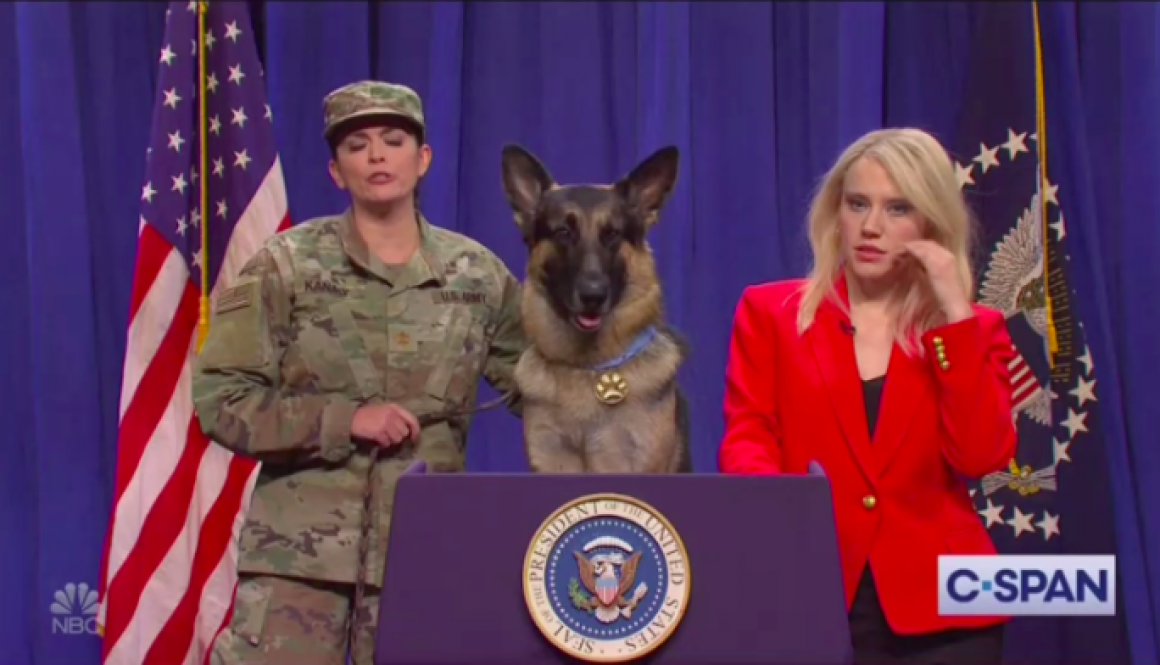 'Saturday Night Live' Gives Military Dog Conan a Press Conference (Watch)