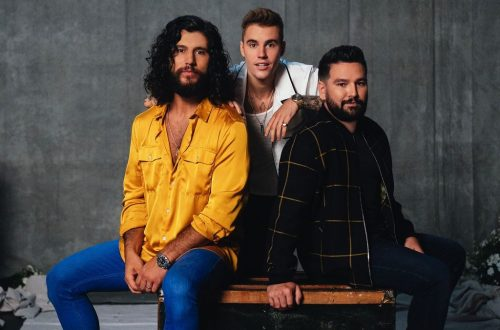 Dan + Shay With Justin Bieber & More: Who Should Win Best Country Duo/Group Performance at 2021 Grammys? Vote!