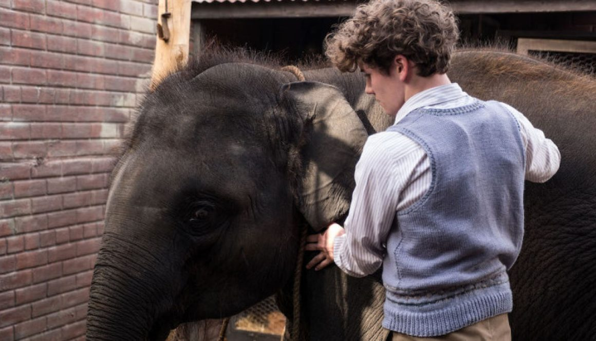 Film Review: 'Zoo'