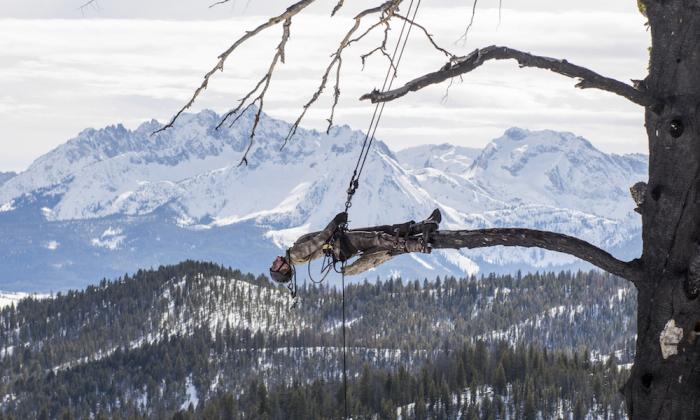 Dare 2b TORO Donna Ski Jacket Impermeabile Isolato Stretch